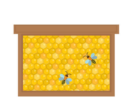 beeswax: Honeycomb in wooden frame icon, flat style. Isolated on white background. Illustration