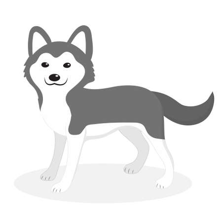 Husky breed dog icon, flat, cartoon style. Cute puppy isolated on white background. Vector illustration, clip-art. Illustration