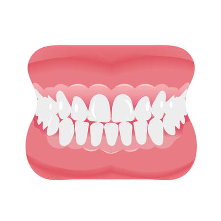 Jaw with teeth icon flat style on white background.