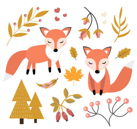 Cute fox in the autumn forest set of objects. Collection of design elements with little foxy, autumn plants, flowers. Kids baby clip art funny smiling animal. Vector illustration. 矢量图像