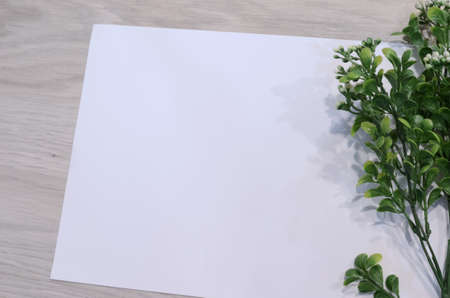 mockup card with plants. invitation card with environment and details Mockup with postcard and flowers on white background.