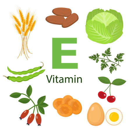 Vitamin E or Tocopherol. Food sources. Natural organic products with a maximum content of vitamin E. Fundamentals of healthy nutrition.