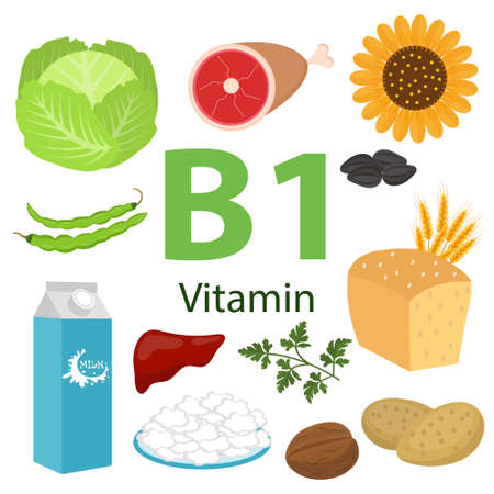 Infographic set of vitamin B1 and useful products spinach, carrot, nut, apricot, cauliflower, onion, pea, beet, potato. Healthy lifestyle and diet vector concept.