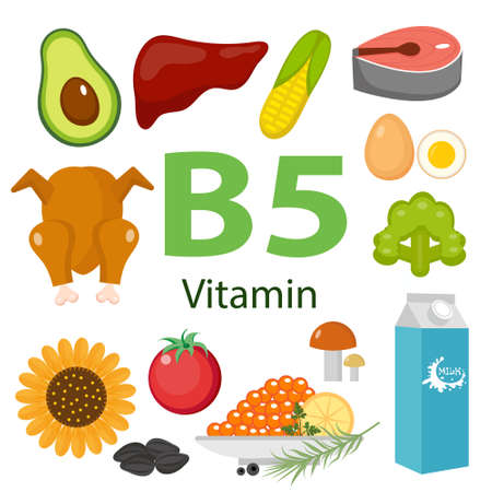 Infographic set of vitamin B5 and useful products avocado, cauliflower, egg, bean, corn, milk, fig, mushroom. Healthy lifestyle and diet vector concept.