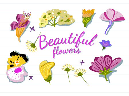 notebook cover: Flowers Illustration