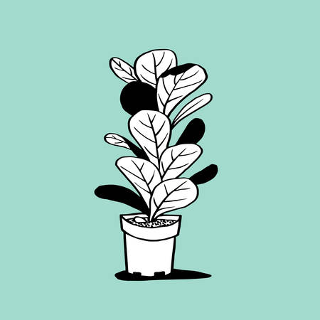 plant pot: Pot and Plant Illustration