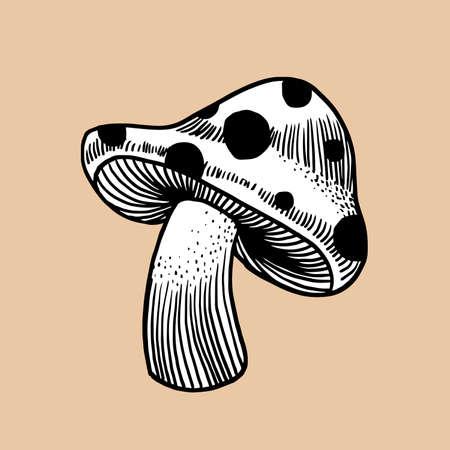 Mushroom  イラスト・ベクター素材