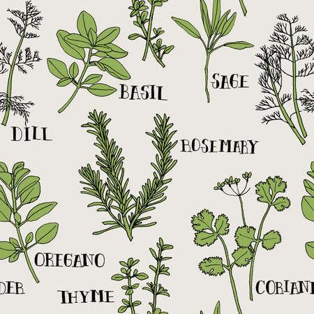 Herb Seamless Pattern 写真素材