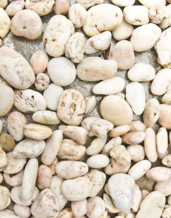 white pebble: White Pebble Stone