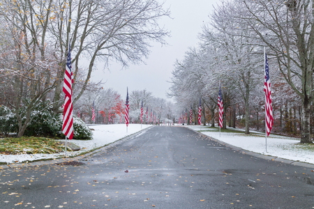 clear day: Snow-covered Veteran Cemetery with Flags