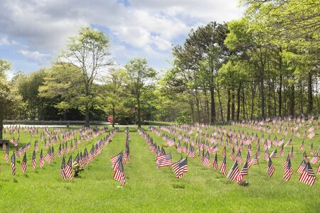 Massachusetts National Cemetery on Memorial Day displaying flags
