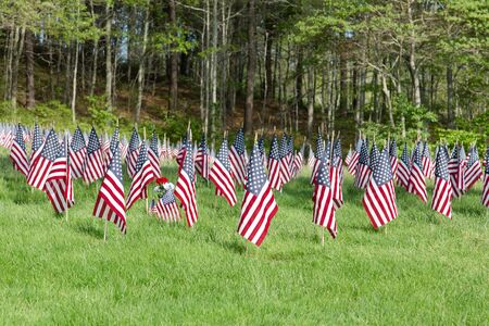 veterans day: Massachusetts National Cemetery on Memorial Day displaying flags