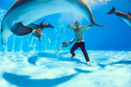 dolphinarium: two men and three dolphin fooling around on the bottom of the dolphinarium