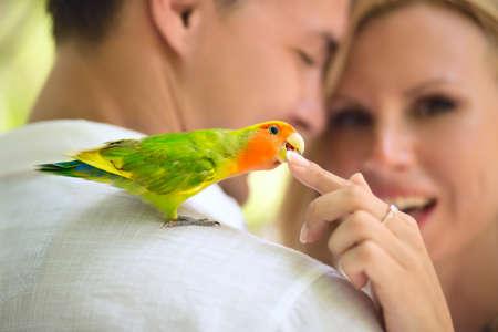Colorfull parrot sitting on the mans shoulder Zdjęcie Seryjne - 37826269