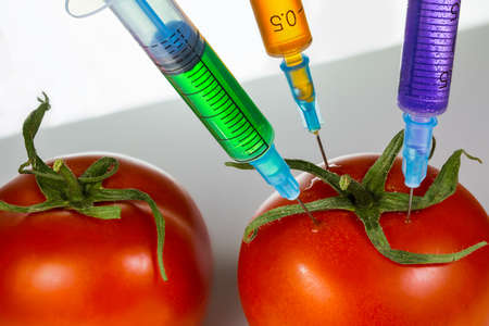 Three syringe with vaccine needle stuck into a juicy red tomato photo
