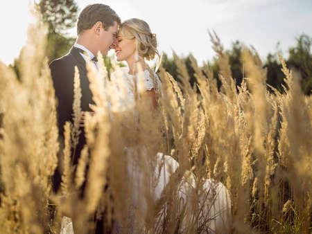 草のフィールドでハグ若い美しい結婚式のカップルの耳。 写真素材