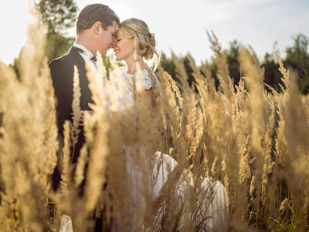 outdoor wedding: young beautiful wedding couple hugging in a field with grass eared.