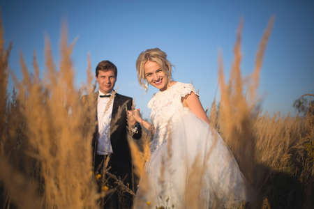 smartly: Young wedding smartly dressed couple goes on a field with high ear. In the rays of the setting sun. Bride leads her husbands hand with a smile. Stock Photo