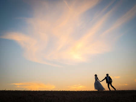 Young wedding couple goes on a field on a background of red sunset sky. Bride stubbornly pulls the arm of her husband, who looks back against the motion. Фото со стока