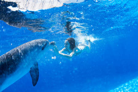 Girl under water communicates and with the dolphins