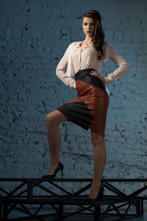blusa: Retrato glamorosa chica de estilo de negocios de pelo castaño vestida con una blusa y una falda de cuero Foto de archivo