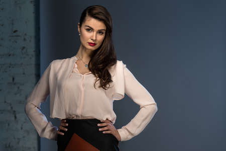 Portrait glamorous brown-haired business style girl dressed in a blouse and a leather skirt