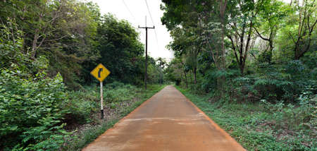 obedecer: Curva de la derecha por delante en el bosque