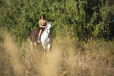 cowgirls: Bella joven montar un caballo blanco en un campo de perfil a la cámara. Foto de archivo