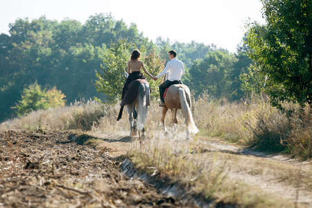 horse love horse kiss animal love: Young couple in love riding a horse walking on the background of autumn nature in a beautiful field. Couple pretty hold each others hand.