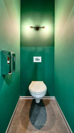 water closet: Green colored water closet with a white toilet. There are a lamp and dual-flush wall-hung button over the toilet. On the left wall there is a toilet tissue dispenser. On the floor there are brown tiles. Stock Photo