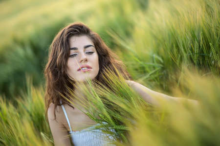 dazzling: Dazzling smiling girl sits in the rye field and looks down. She wears a light dress. Sunlight fills from the back. Outdoors. Horizontal. Stock Photo