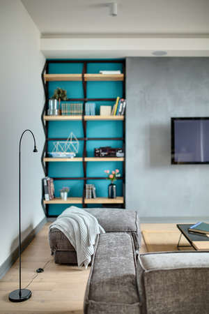shelve: Interior in a modern style with gray walls and a blue niche, parquet with a carpet on the floor. There is a gray sofa and a pouf with a plaid, table, shelve with books and flowers, TV, player.