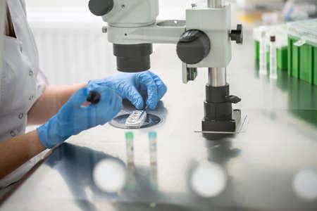 体外受精の結果をチェック