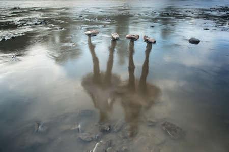 Ballet art collage