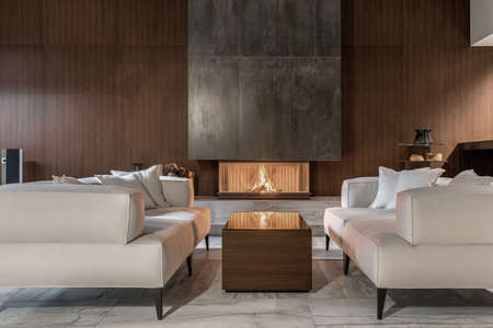 Modern interior with wooden wall and burning fireplace