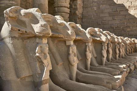 Row of ancient egyptian ram statues in Karnak Temple Banco de Imagens
