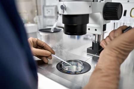 Processus de fécondation in vitro en laboratoire