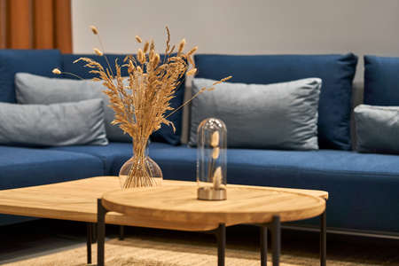 Luminous modern interior with wooden tables with glass vases with dried plants and a blue sofa with gray pillows. Closeup photo with selective focus. Horizontal. Zdjęcie Seryjne