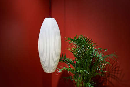 Big green plant and a hanging white lamp on the bright red wall background in the illuminated interior. Closeup horizontal photo. Zdjęcie Seryjne