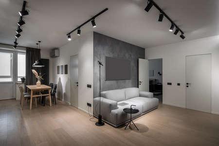 Interior of illuminated modern flat with kitchen zone Zdjęcie Seryjne