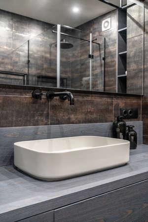 Interior of luminous modern bathroom with bronze walls