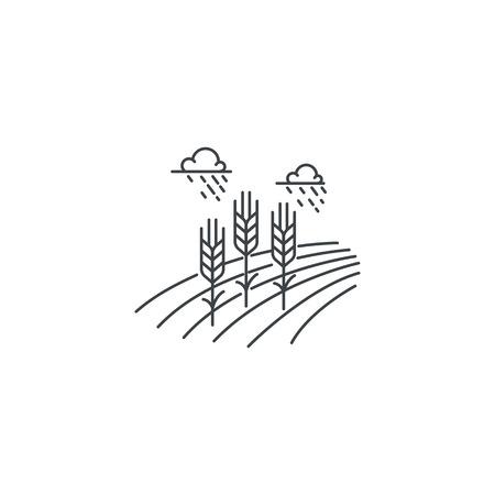 ファーム小麦線アイコン。小麦フィールド ベクトルの線形設計が白い背景で隔離の概要図。ファームのロゴのテンプレート、農業ビジネス、ライン