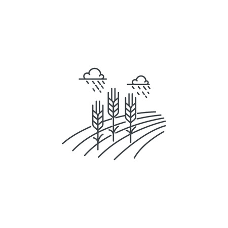 Farm wheat line icon. Outline illustration of wheat field vector linear design isolated on white background. Farm logo template, element for agriculture business, line icon object. Ilustracja