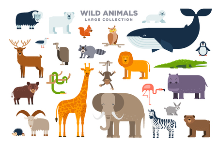 The large set of wild animals in flat design isolated on white background. Elephant, lion, whale, giraffe, zebra and other animals vector flat illustration