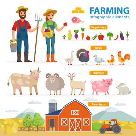 A Farming infographic elements. Two farmers - man and woman, farm animals, equipment, barn, tractor, landscape large set of vector flat illustrations isolated on white background. Eco Farming concept.