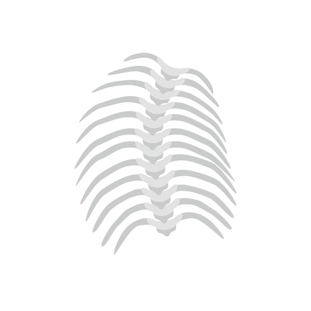 Thoracic Scoliosis on the thoracic spine and curved backbone concept vector illustration in flat design isolated on white background. Scoliosis medical infographic element, spine and ribs icon