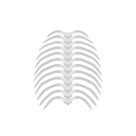 Thoracic backbone and straight spine concept vector illustration in flat design isolated on white background. Medical infographic element, spine and ribs icon Illustration