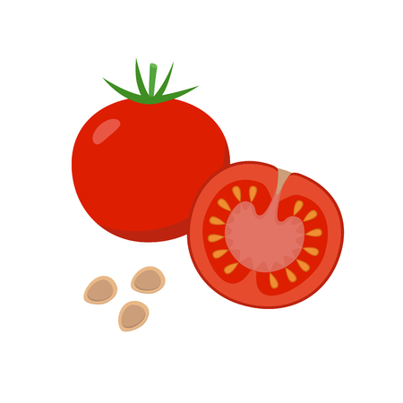 Tomato vector flat illustration. Whole and halved tomato and seeds isolated on white background. Packaging design element.