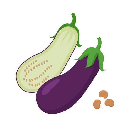 Eggplant vector flat illustration. Whole and halved eggplant and seeds isolated on white background. Packaging design element.