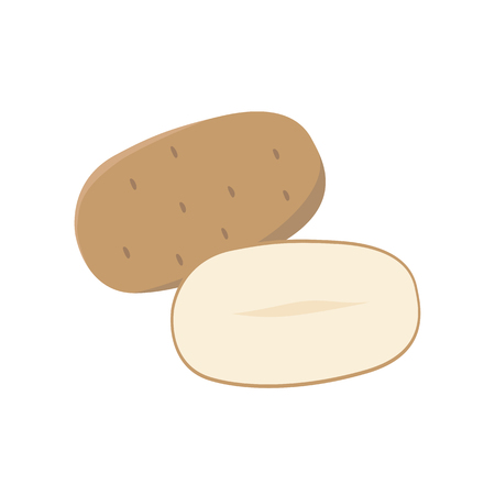 Potato vector flat illustration. Whole and halved potato isolated on white background. Packaging design element.